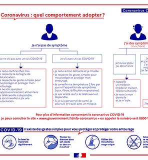 coronavirus - codiv-19 : gestes a adopter