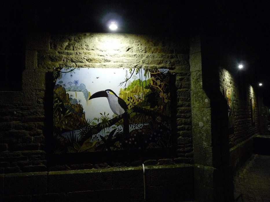 Le Cantique des Oiseaux : retour sur l''inauguration p1140001